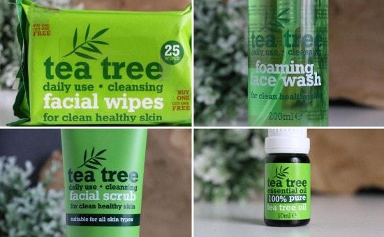 12 tea tree
